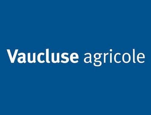 Vaucluse Agricole – Innovation et startups au service d'une agriculture plus performante